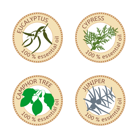 Set of flat essential oil labels. Eucalyptus, cypress, camphor tree, juniper. Vector illustration. Brown stamps, bright silhouettes. For stickers, tags advertising banners poster