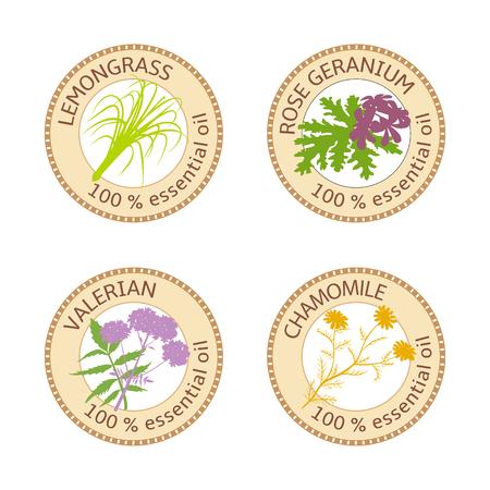 Set von ätherischen Ölen Etiketten. Rose Geranium, Zitronengras, Kamille, Baldrian Kraut Vektorgrafik