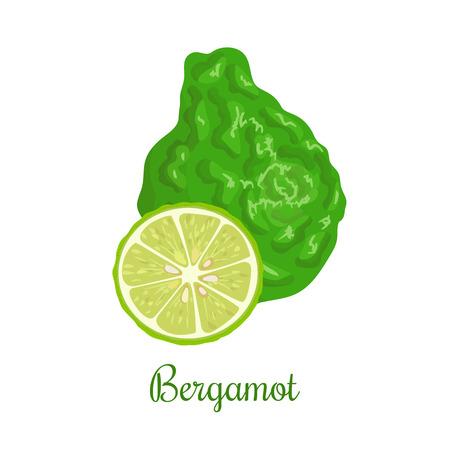 subtly: Fresh bergamot or Citrus bergamia. Whole and half.