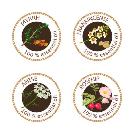 에센셜 오일 레이블 집합입니다. 몰약, 아니스, 장미 꽃, 유향