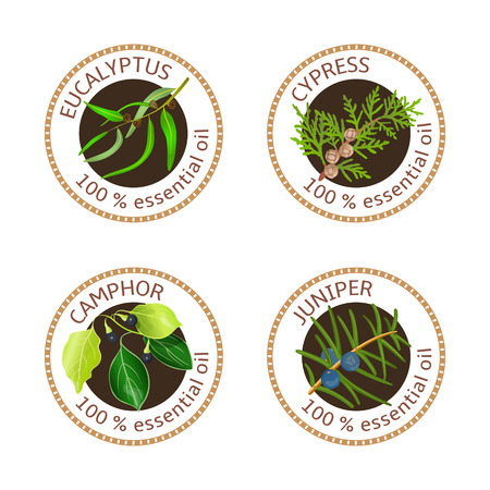 cypress tree: Set of 100 essential oils labels. Eucalyptus, cypress, camphor tree, juniper symbols. Logo collection. Vector illustration. Brown stamps, realistic. For cosmetics, spa, health care, aromatherapy, tags Illustration