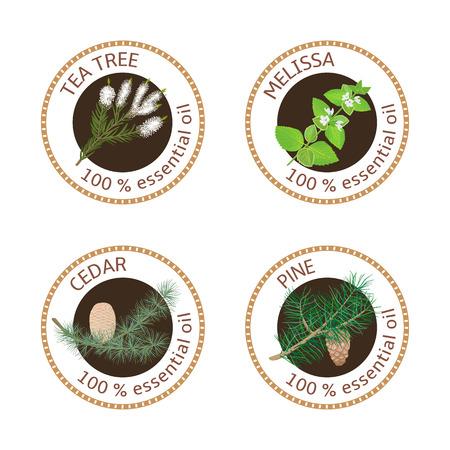 tea tree: Set of essential oils labels. Pine tree, Cedar, Tea tree, melissa