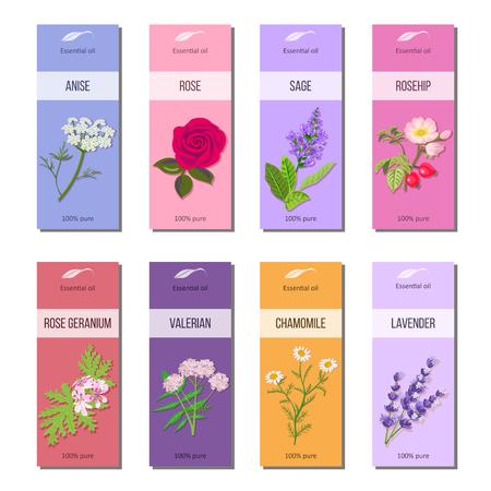 Conjunto de etiquetas de aceites esenciales. Rosa, anís, salvia, rosa mosqueta, lavanda, geranio rosa, manzanilla, hierba valeriana. 8 colección de etiquetas de cinta. Para cosméticos, perfumes, productos para el cuidado de la salud, aromaterapia, banners