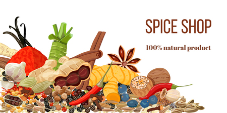 Set of Realistic popular culinary spices. Spice shop logo. Store sign. Ginger, chili pepper, garlic, nutmeg, anise etc. For store, natural health care, logo design, label, sticker, poster, advertising