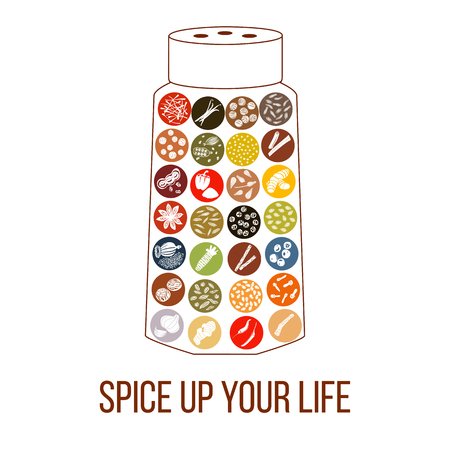Spice up your life sentence. humorous pepperbox with flat popular culinary spices white silhouettes on Color background. Ginger, chili pepper, garlic, nutmeg, anise. For logo, design, poster, prints