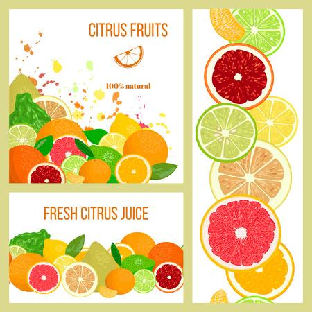 Citrus Juicy fruits. Label cards set. Realistic Bergamot, lemon, grapefruit, lime, mandarin, pomelo, orange. splashes and slices. For fresh bar, cocktails, cafe, juice, package, advertising, design Illustration