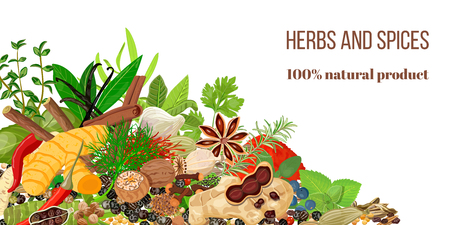 cloves: Card with Pile of Realistic popular culinary herbs and spices. Spice store logo. Shop sign Illustration