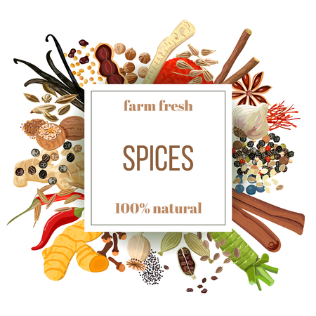 Culinary spices big set under squire emblem. Bunch of cooking seasonings. Farm fresh. For cosmetics, restaurant, store, natural health care products. As logo design, price tag, label, poster, banner