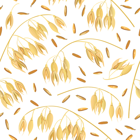 Oat ears of grain and bran. seamless pattern vector. Golden spike and corn