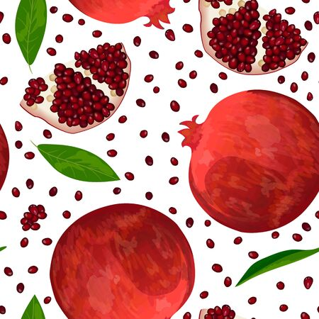 Ripe red pomegranate, seeds and slices isolated on white. seamless pattern vector Illustration
