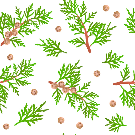 Cypress branch seamless pattern. green branch and cones Stok Fotoğraf - 80763277