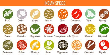 큰 벡터 인기있는 인도 향신료의 집합입니다.