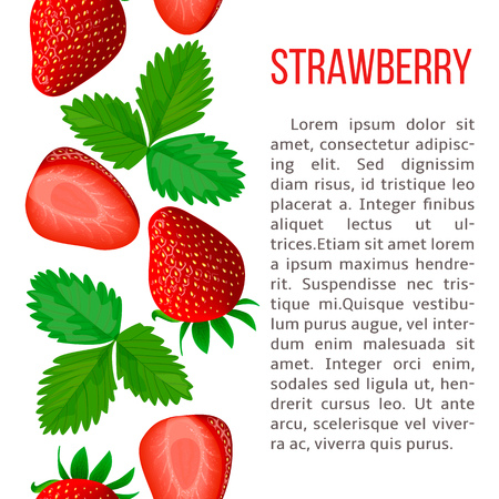 Ripe strawberry. stripe with description text. Concept idea