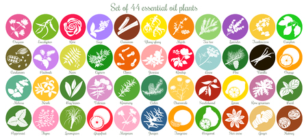 Big set of 44 flat essential oil labels. White Silhouettes