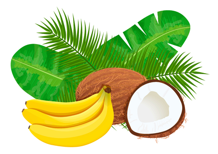 Ripe and juice Bananas and coconuts with palm leaves. Vector illustration jungle motif. Can be used as background texture, wrapping paper, textile, wallpaper design, perfumery, aromatherapy, cosmetics Illustration