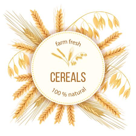 3d icon vector set wheat illustration