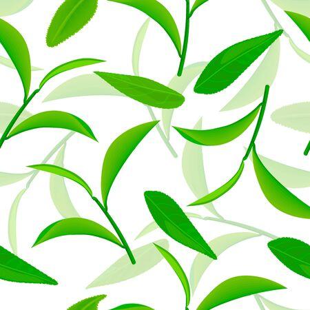 vividly flying green tea leaves