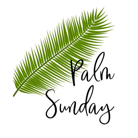 Icona verde di vettore delle foglie di palma. Illustrazione vettoriale per la festa cristiana. Carattere scritto a mano di testo Domenica delle Palme. Per cartoline, design, stampe, decorazioni, etichette, modelli Vettoriali