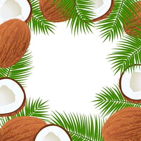 Whole and cracked Ripe coconuts and palm leaves frame. Central place for text. label template. Tropical
