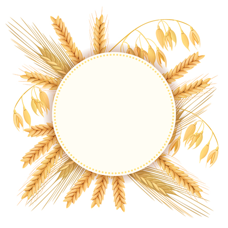Wheat, barley, oat and rye. 3d icon vector set. Four cereals grains and ears. Round label, text farm fresh 100 percent natural. seeds and plants. Can be used for cooking, bakery, tags, labels, textile