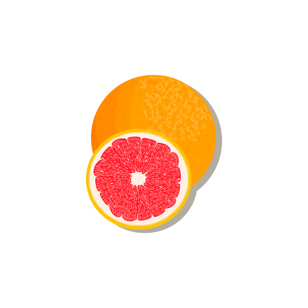 citrus products - orange, lemon, lime, bergamot, tangerine, grapefruit with leaves. Vector set of whole fruits and slices. for design, poster, tag, prints textile perfume aromatherapy Çizim