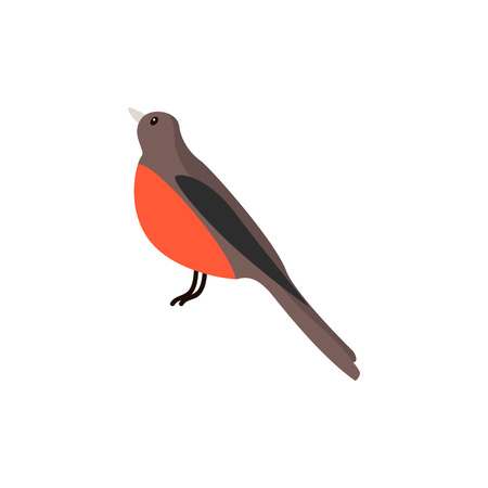 beautiful winter bird bullfinch on a white isolated background vector illustration