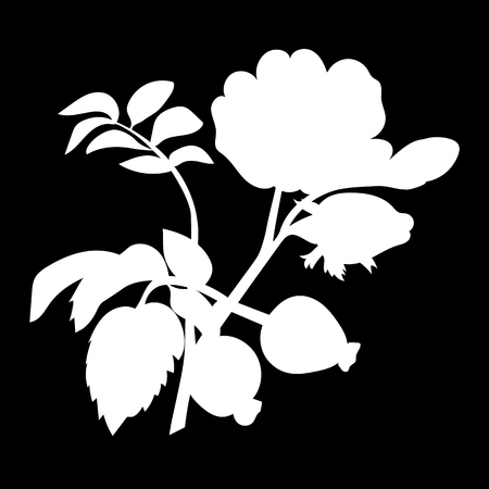 Branch of the dog rose with leaves and rose hips isolated icon. white silhouette. Vector illustration
