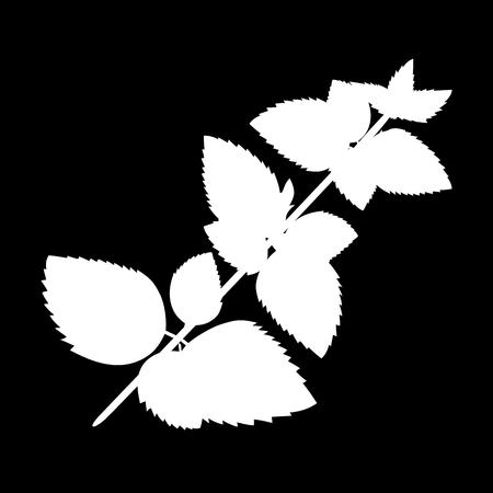 Melissa or lemon balm isolated icon. white silhouette. Vector illustration Ilustracja