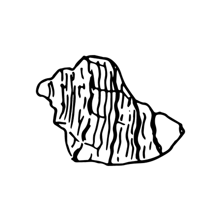 Set of various beautiful mollusk sea shells, sketch illustration Illustration