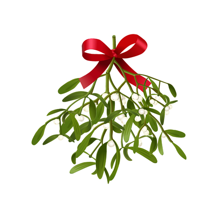 Mistletoe. Vector illustration of hanging fluffy mistletoe sprigs with berries and red bow isolated on white background for Christmas cards and decorative design. Çizim