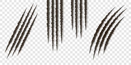 Ausgefallene realistische Krallenkratzer - Vektor isoliert. Talons schneidet Tierkatze, Hund, Tiger, Löwe, Bärenillustration. Kann zur Dekoration, als Gestaltungselement bei Druck, Textilien, Tapeten, Drucken verwendet werden Vektorgrafik