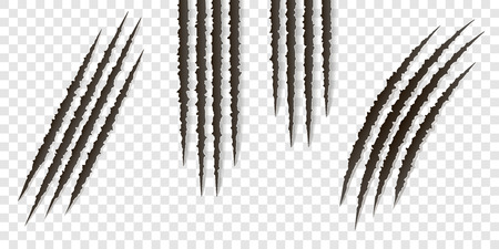 Fancy realistic claws scratches - vector isolated. Talons cuts animal cat, dog, tiger, lion, bear illustration. Can be used for decoration, as design element at printing, textile, wallpaper, prints