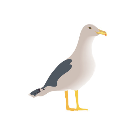 Resting curious standing sea bird, half side view, long neck, white feathers, legs, yellow beak, folded spotted wings. The common seagull mew gull. Vector illustration. Element for your design. web, prints