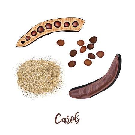 Ripe carob sweet pods whole and halved, seeds and carob powder on the white background. vector illustration. for food decoration, bakery, organic healthy food, caffeine free, locust bean gum, gelling