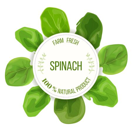 Spinach fresh juicy raw leaves around circle badge with place for text. Concept for logo, tag, advertising, prints, label Иллюстрация