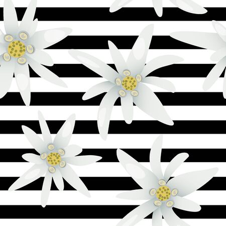Striped seamless pattern with edelweiss flowers. Snow beauty. Vector illustration. Alpine star. swiss symbol.