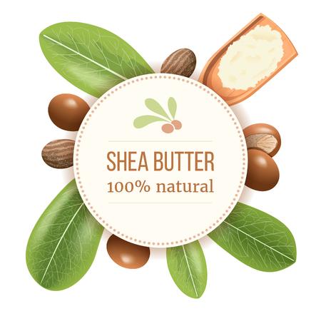Ripe shea nuts and leaf Round Circle badge. shi tree pods whole and cracked. Vitellaria paradoxa