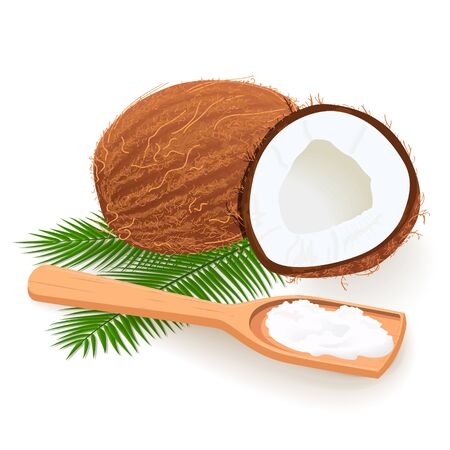 Coconut butter on wooden spoon. Whole and cracked Ripe coconuts and palm leaves. Copra. cope space.