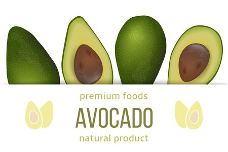 Avocado card template with copy space on stripe. ripe raw fruit. Persea americana exotic  イラスト・ベクター素材