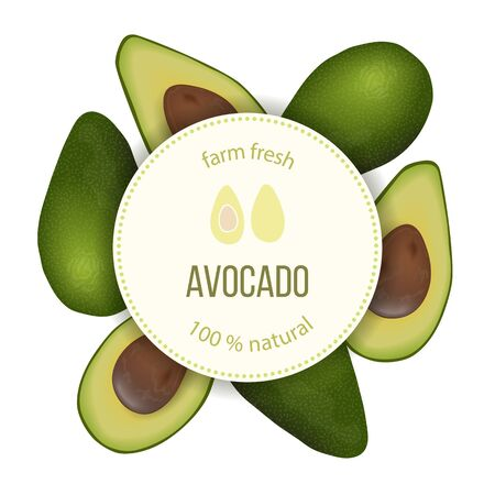 Avocado Round Circle badge with copy space on stripe. ripe raw fruit. Persea americana exotic whole and halved