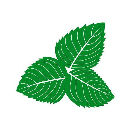 Mint icon isolated on white Illusztráció