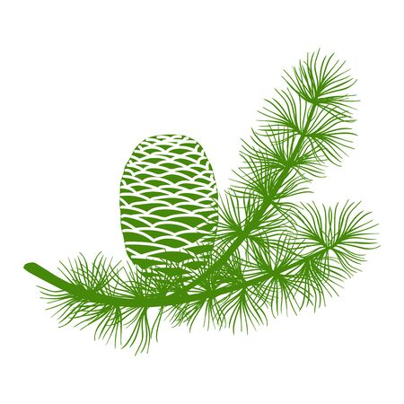 Green fluffy cedar branch and two cones. Isolated on white vector illustration flat Vector illustration
