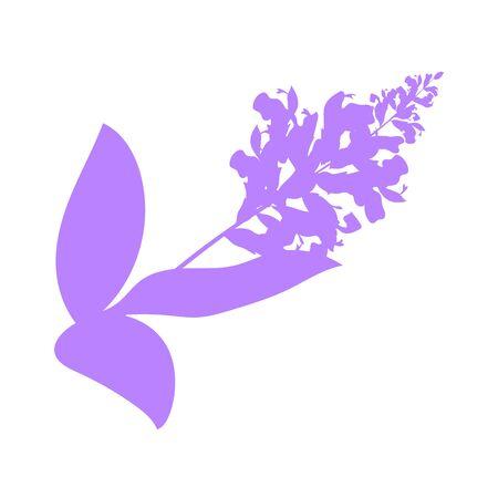 sage herb, food vector illustration, isolated logo Ilustração