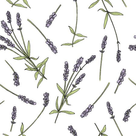 Lavender flowers colored seamless vector pattern sketch style. Bunch of purple Lavandula flowers in bloom Banque d'images - 140641615