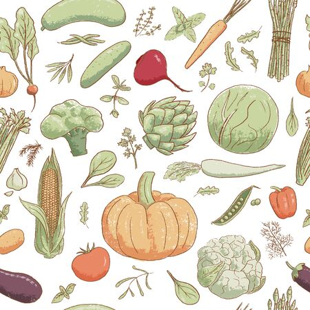 Hand-drawn popular cartoon vintage style vegetables and coolinary herbs, vector seamless pattern Illustration