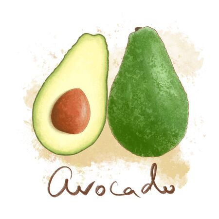 Ripe juicy avocado isolated. Fresh vegetable icon whole and halved. Delisious food, vitamins, healthe lifestyle,