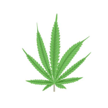 Cannabis green leaf vector illustration. Hemp plant. For medicine, textile, clothing, cordage, fibre, food