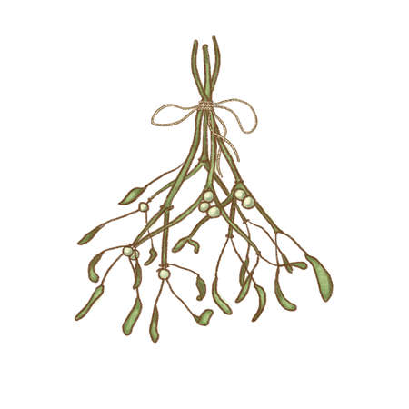 Colorful holiday Christmas hanging mistletoe isolated over white background Banque d'images