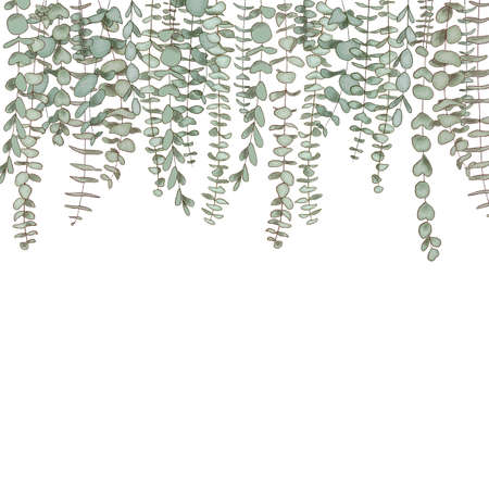 Eucalyptus branches hanging from top, copy space Watercolor like composition Herbs for cards, wedding invitation