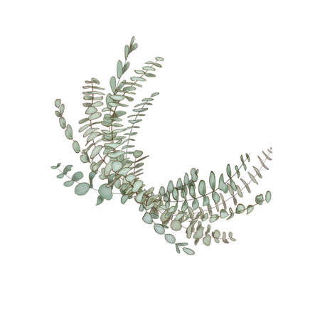 Eucalyptus garland, copy space Watercolor like composition Herbs for cards